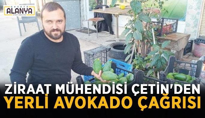 Ziraat mühendisi Çetin'den Yerli Avokado çağrısı