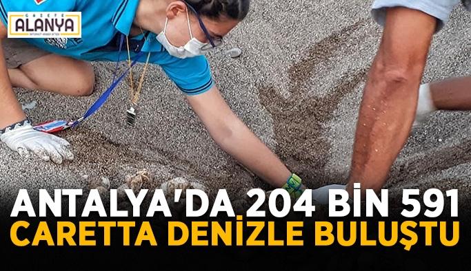 Antalya'da 204 bin 591 caretta denizle buluşturuldu