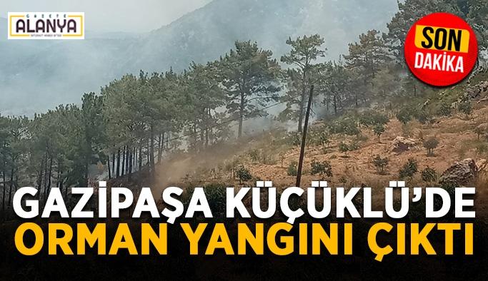Gazipaşa Küçüklü'de orman yangını çıktı