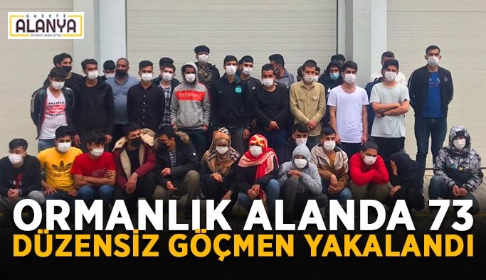 Ormanlık alanda 73 düzensiz göçmen yakalandı