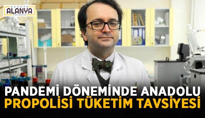 Pandemi döneminde Anadolu propolisi tüketim tavsiyesi
