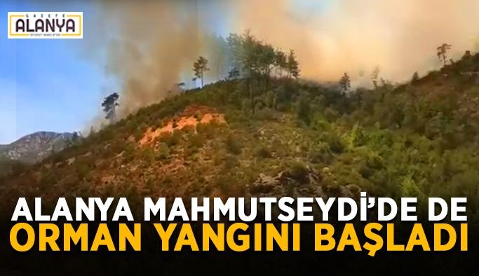 Alanya Mahmutseydi'de de orman yangını başladı