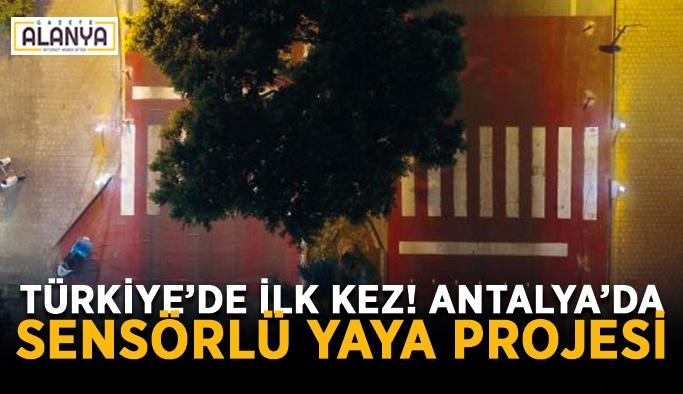 Türkiye'de ilk kez! Antalya'da sensörlü yaya projesi