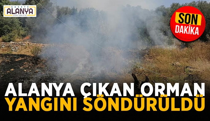 Alanya Mahmutlar'da çıkan orman yangını söndürüldü