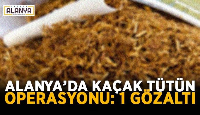 Alanya'da kaçak tütün operasyonu: 1 gözaltı