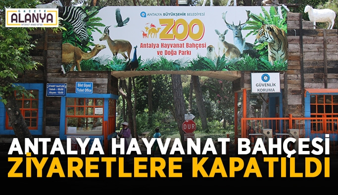 Antalya Hayvanat Bahçesi ziyaretlere kapatıldı