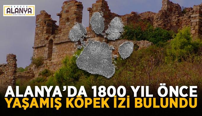 Alanya'da 1800 yıl önce yaşamış köpek izi bulundu