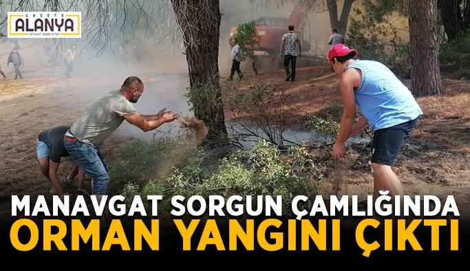 Manavgat Sorgun Çamlığında orman yangını çıktı