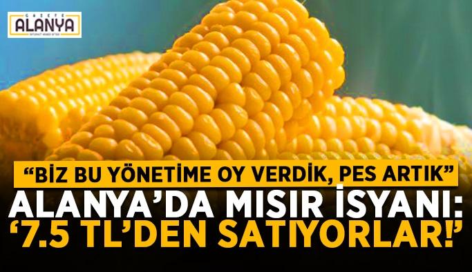 """Alanya'da mısır isyanı: """"7.5 TL'den satıyorlar!"""""""