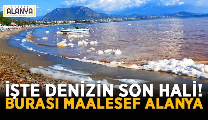 """Başkan Kayhan: """"Allah belanızı versin"""""""