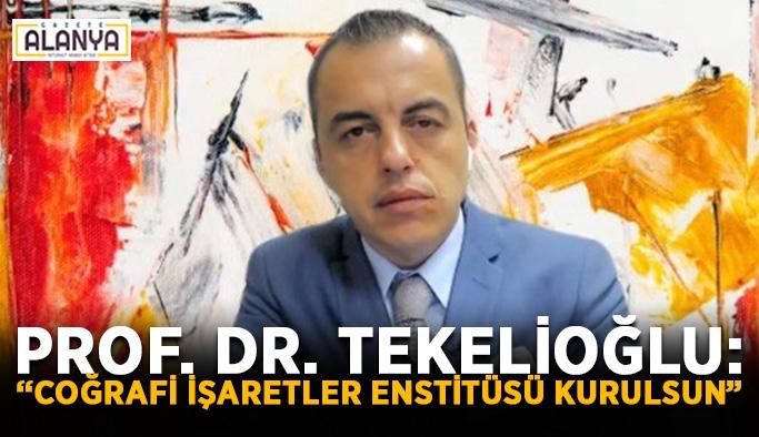 """Prof. Dr. Tekelioğlu: """"Coğrafi İşaretler Enstitüsü kurulsun"""""""