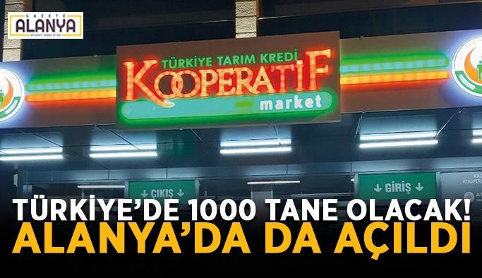 Türkiye'de 1000 tane olacak! Alanya'da da açıldı