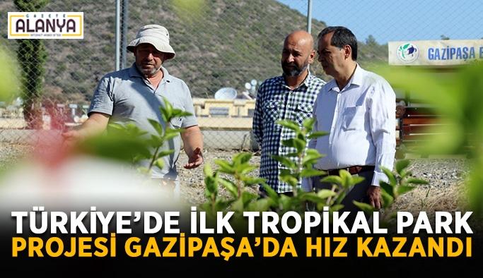 Türkiye'de ilk Tropikal Park Projesi Gazipaşa'da hız kazandı