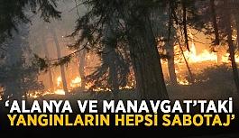 """Bebekoğlu: """"Orman yangınlarının hepsi sabotaj"""""""