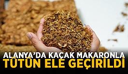 Alanya'da kaçak makaronla tütün ele geçirildi