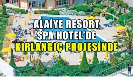 Alaiye Resort Spa Otel'de Kırlangıç Projesinde