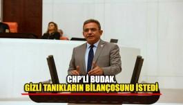 CHP'li Budak, gizli tanıkların bilançosunu istedi