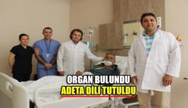 Organ bulundu,adeta dili tutuldu