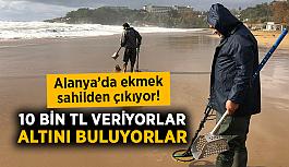 Alanya'da ekmek sahilden çıkıyor! 10 bin TL veriyorlar, altını buluyorlar