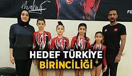 Hedef Türkiye birinciliği