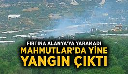 Fırtına Alanya'ya yaramadı: Mahmutlar'da yine yangın çıktı