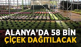 Alanya'da 58 bin çiçek dağıtılacak
