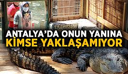 Antalya'da onun yanına kimse yaklaşamıyor