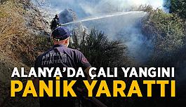 Alanya'da çalı yangını panik yarattı