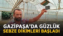 Gazipaşa'da güzlük sebze dikimleri başladı