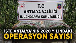 İşte Antalya'nın 2020 yılındaki operasyon sayısı
