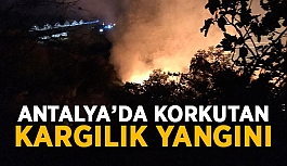Antalya'da korkutan kargılık yangını