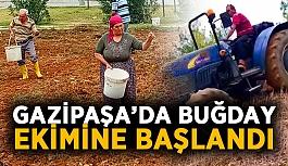 Gazipaşa'da buğday ekimine başlandı