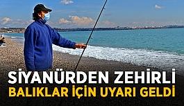 Siyanürden zehirli balıklar için uyarı geldi