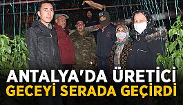 Antalya'da üretici geceyi seralarda geçirdi