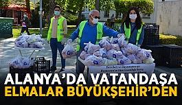Alanya'da vatandaşa elmalar Büyükşehir'den