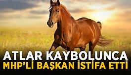 Gönderilen atlar kaybolunca MHP'li başkan...
