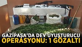 Gazipaşa'da dev uyuşturucu operasyonu: 1 gözaltı