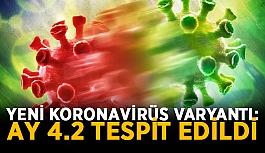 Yeni koronavirüs varyantı: AY 4.2 tespit edildi